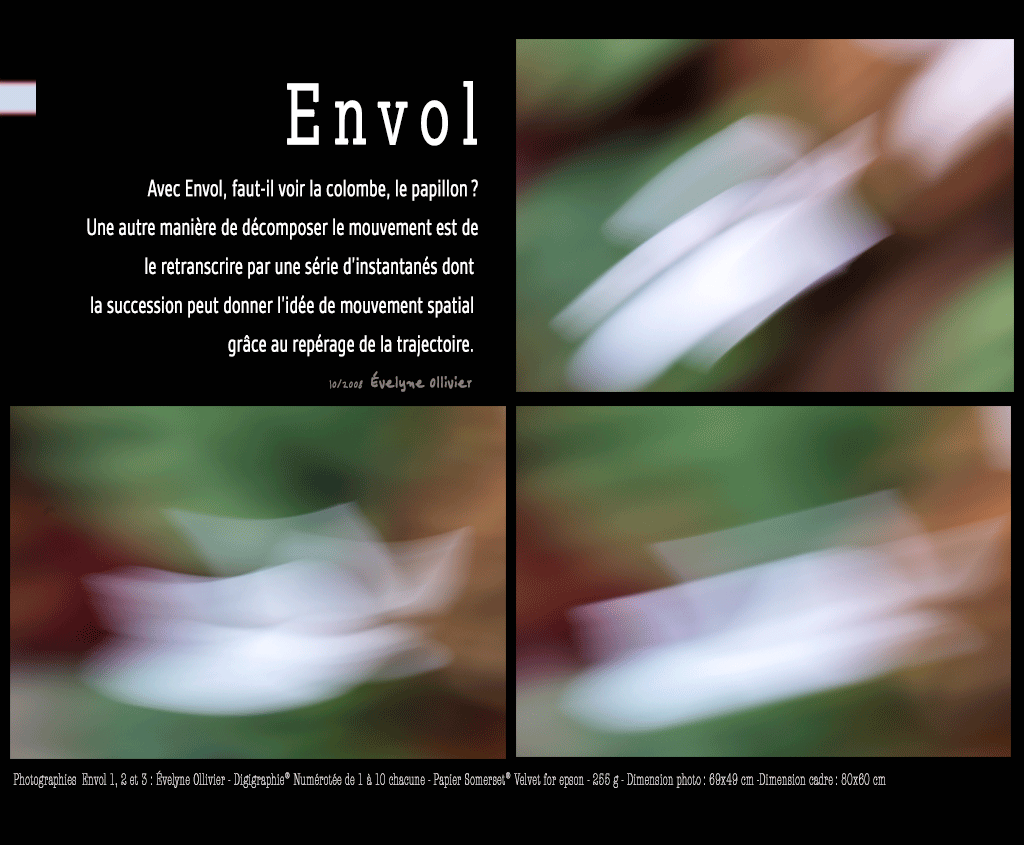 Photographies d'art, Evelyne Ollivier - Mouvement, série Envol